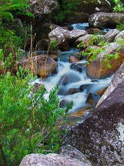 Riacho (Fabrcio Celso) Tags: nature rio river paisagens