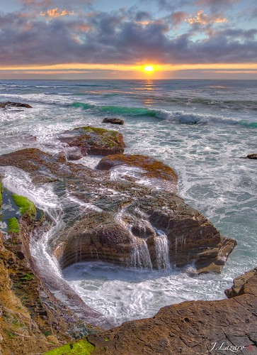 Point Loma Tidepools ⓒ