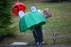 Vihmavarjumngud (anuwintschalek) Tags: umbrella garden austria spring 85mm april garten kalle niedersterreich 2012 frhling kodu aed kevad regenschirm wienerneustadt lapsed micronikkor d7k vihmavari nikond7000