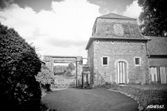 Leuven (Ashes 57) Tags: leuven loefah oneman