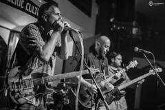 9-10 Mai 2014 » Blues Con-Fusion Fani Adumitroaie
