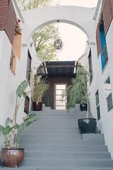 (Terrini) Tags: door plants