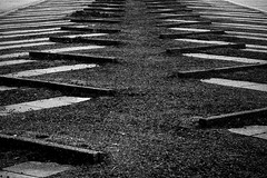 Inge Hoogendoorn (ingehoogendoorn) Tags: mathematics patronen herhaling repetition pattern patterns blackandwhite blacknwhite zwartwit parkeerplaats castricum bakkum patroon herhaald