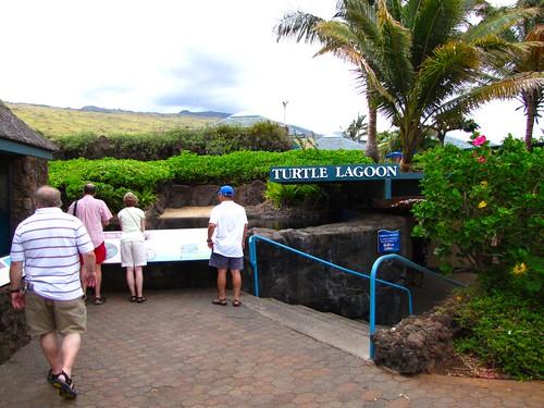 heading towards the turtle lagoon