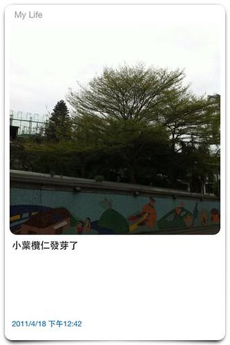 2011-04-18 12.42.jpg