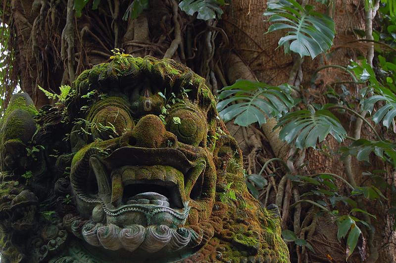 _Bali_Ubud_