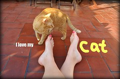 The Joy and I on the roof terrace, Barcelona (trvbaker) Tags: barcelona orange pet feet girl animal cat ginger spain feline chat toes terrace joy kitty patio gato gatito pinktoenails catnipaddicts friendsofzeusandphoebe