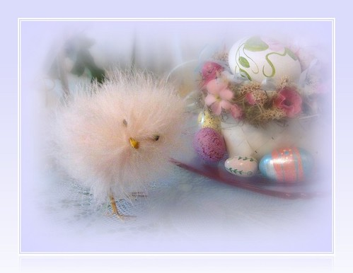 A Soft & Fuzzy Easter to Everyone!