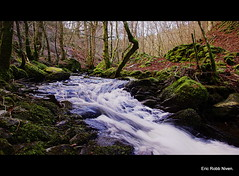 The Inchewan Burn. (eric robb niven) Tags: winter scotland eric pentax glen dunkeld robb birnam niven kx