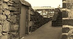 Lugar do Cachorro, ilha do Pico, Açores (Carlos_Fontes) Tags: canada black portugal rock island lava pico cachorro ilha picnik azores açores basalto património