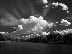 flauschig (~janne) Tags: trees sky white black berlin nature water clouds wasser natur himmel wolken olympus bäume schwarz janne weis janusz e520 ziob