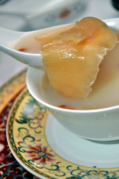 Double boiled baby superior shark's fin in shark's bone cartilage