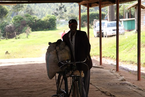 Proud farmer at Kangocho