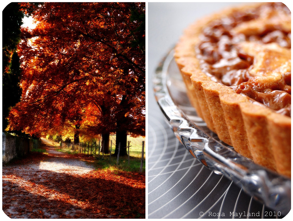 Nut Tart Picnik collage 1 bis