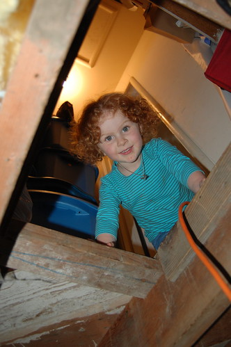 Helping Dad with the crawlspace