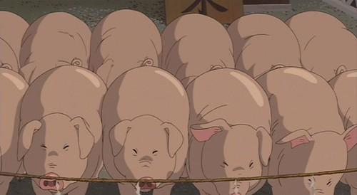 New Savanna Pigs In Spirited Away