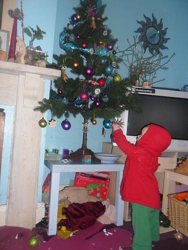 roo tree 001