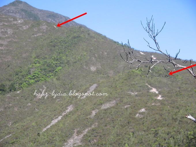 11-19 April 2005, Mount Tahan