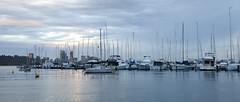 Matilda Bay Panorama