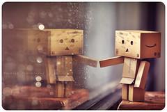 { Danbo reflection } (B@rbar@ (Barbara Palmisano)) Tags: life light reflection cute glass rain still amazon nikon day natural bokeh rainy nikkor pioggia vetro riflesso gocce danbo giornata tenero piovosa danboard