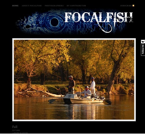 Focalfish