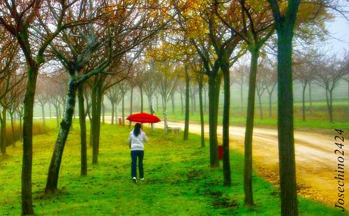 La chica del paraguas rojo.