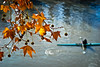 Lightness (the_lighter) Tags: winter rome roma foglie river 50mm nikon fiume tevere inverno canoa d60