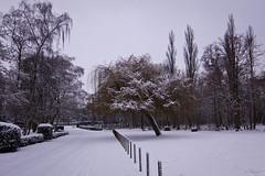 Winters BLOSO domein (eosfoto) Tags: winter canon sneeuw mechelen landschap hofstade 40d blosodomein tripleniceshot mygearandmepremium mygearandmebronze jlshoot