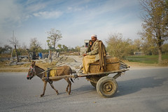Father and daughter by road (Lil [Kristen Elsby]) Tags: road travel pakistan man rural asia village child father transport donkey straw hay cart kp haybale southasia taxila travelphotography lx3 panasoniclumixlx3 khyberpakhtunkhwa