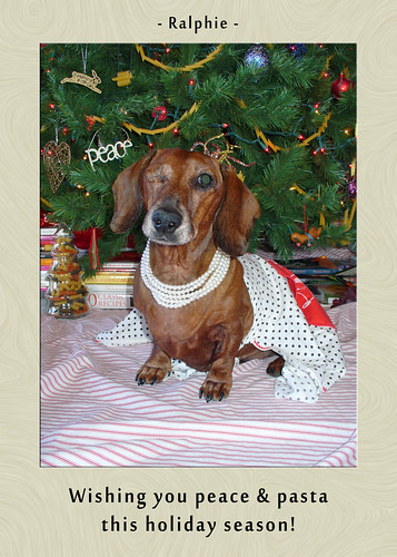2010 FSMas Card - Ralphie (shot his eye out)