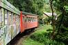 Mit dem Zug nach Morretes