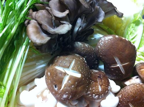 キノコ と 白菜