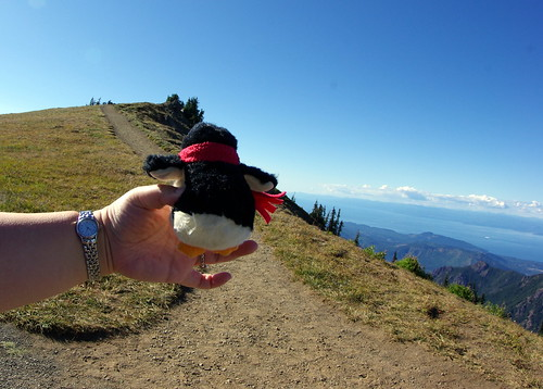 2010-08-28 Hurricane Ridge (88)