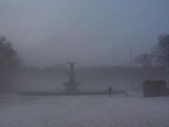 man with dog ( Brusselssprout_in_Manhattan  Eliane ) Tags: nyc winter newyork fog centralpark manhattan upperwestside petitmatin bethesdafountain morningrun