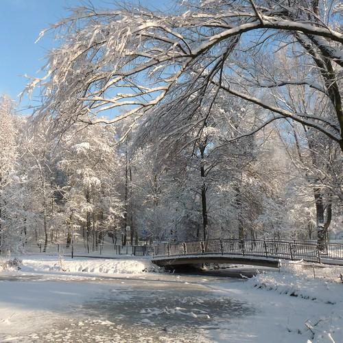 Public Garden - Dragonderpark - Veenendaal - The Netherlands (2 pictures)