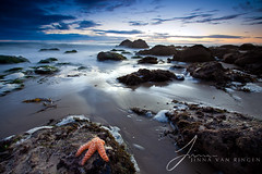 Reach For The Stars (Jinna van Ringen) Tags: california longexposure travel sea beach nature water girl night canon landscape photography eos star evening coast rocks ray photographer starfish ringen shore lee nd elusive van reverse filters grad singh elmatador jorinde jinna singhray elmatadorstatebeach johnmueller elusivephoto elusivephotography 5dmarkii jorindevanringen jinnavanringen seascapeleefilters