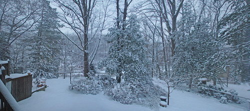 Winter Wonderland panorama