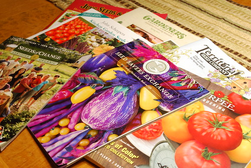 January Harvest - Seed Catalogs