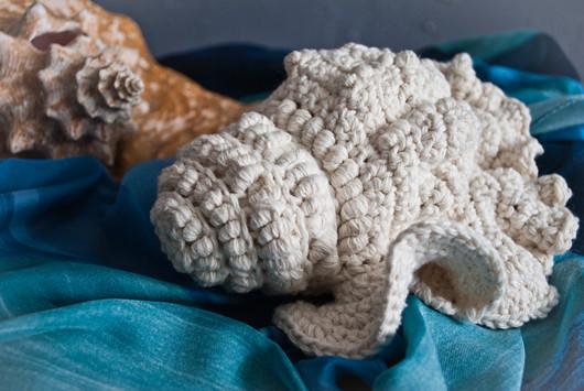 cotton seashell_2