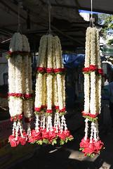 Bangalore 016 Gandhi Bazaar.jpg