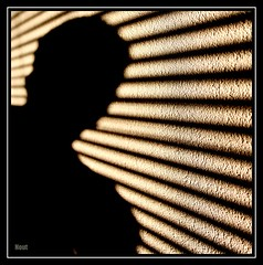 Noutyboy (Noutyboy) Tags: new original light shadow sun white abstract black hot holland macro home netherlands lines wall canon licht europa europe utrecht shadows stripes nederland thenetherlands zebra abstraction schaduw zwart wit zon silhouet nieuwegein muur lijnen strepen streep lijn benelux schaduwen allxpressus 1000d eos1000d mygearandmepremium mygearandmesilver