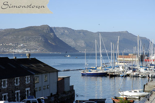 South Winds, Simons Town