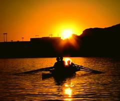 Behind the Orange... (stouglas12) Tags: sunset arizona orange lake reflection phoenix silhouette town crew rowing tempe