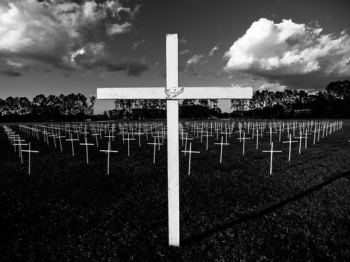 Field of Crosses (18/365)