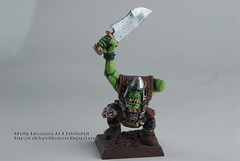 One Armed Orc