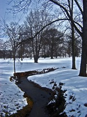 Winter Brook (jack byrnes hill) Tags: trees winter snow newjersey