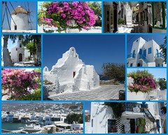 Greek Islands (Salicia) Tags: ocean cruise flowers sea roses holiday seascape flower fauna photography flora holidays honeymoon skies turquoise ships cruising windmills villages romance santorini exotic crete tropical resting oceans tours greekislands vacations touring floraa