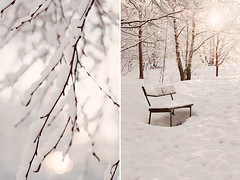 Winter diptych (Karin A ~) Tags: winter light white snow sweden winterdiptych