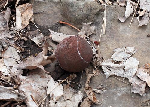 071 Forgotten Ball 02