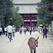 "Another Nara deer • <a style=""font-size:0.8em;"" href=""https://www.flickr.com/photos/40181681@N02/5207915331/"" target=""_blank"">View on Flickr</a>"